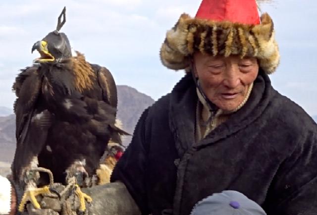 Eagle returned to handler